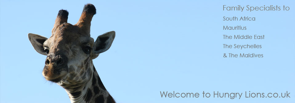 Welcome to Hungry Lions - Family specialists to South Africa, Mauritius, The Middle East & The Seychelles
