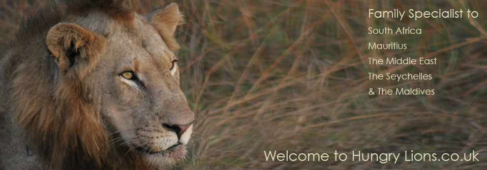 Welcome to Hungry Lions - Family specialists to South Africa, Mauritius, The Middle East, The Seychelles & The Maldives